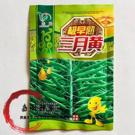 成都 三月黃油菜籽種子包郵