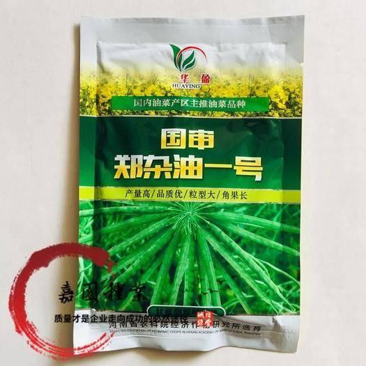 成都 國審鄭雜油一號油菜籽種子包郵