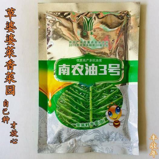 沭陽縣 油菜籽種子雜交高產多油菜籽種子包郵