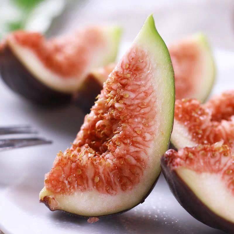 波姬红无花果 孕妇水果