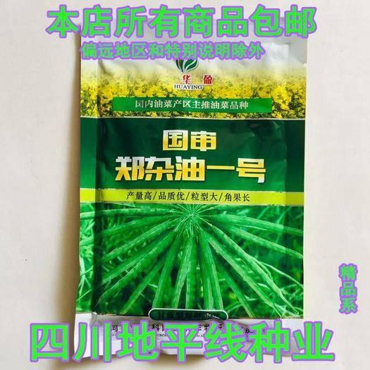 南充嘉陵区紫油菜种子 国审郑杂油一号杂交种子包邮