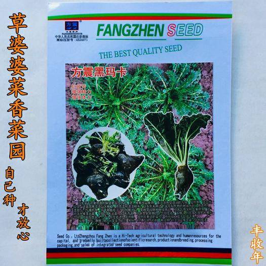 宿迁沭阳县 黑玛咖种子玛卡种子特色菜种子包邮