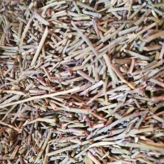 保定安國市麻黃 麻 黃正品內蒙貨 干凈無雜質 人工挑選 保含量 一公斤包郵