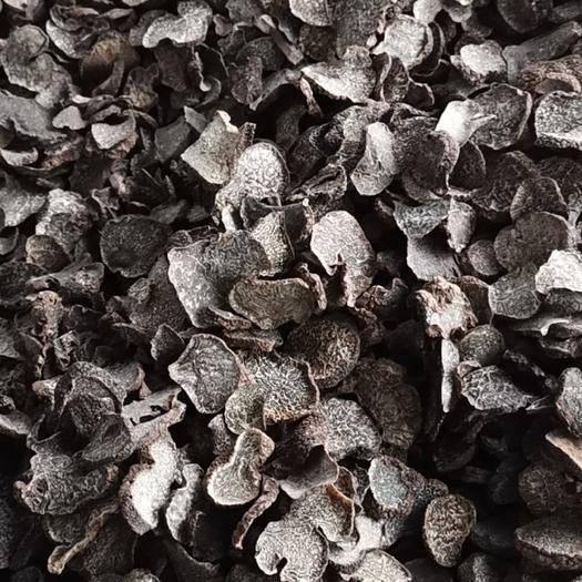 云南省迪庆藏族自治州香格里拉市 松露  块菌