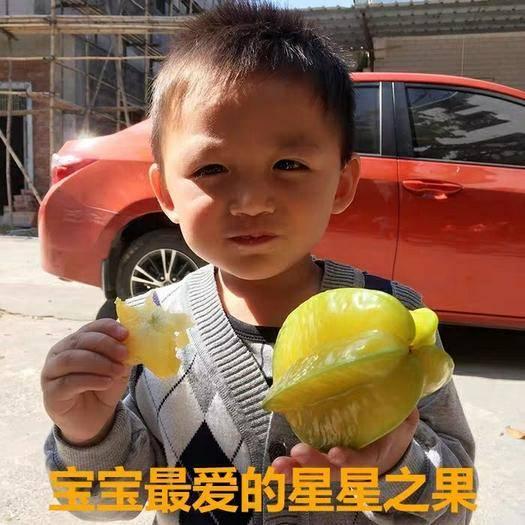 廣州 自己種植的楊桃