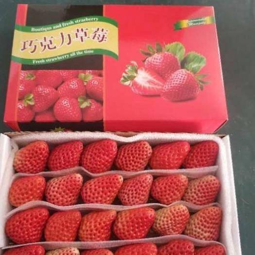 東港市九九草莓 丹東巧克力裝15 20 24 28粒尋求批發商烘焙水果撈專用