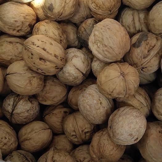 宁夏回族自治区吴忠市青铜峡市核桃仁 宁夏百年大树结的果  味道香