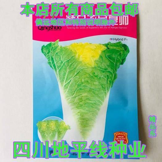 四川省南充市嘉陵区 白菜种子夏阳白菜种子娃娃娃菜种子包邮