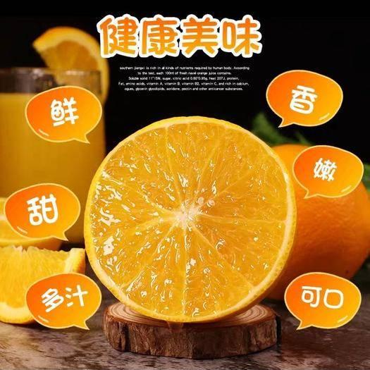 江西省赣州市大余县 江西赣南的脐橙橙子新鲜水果带箱大果整箱蜜甜柑橘冰糖现摘现采