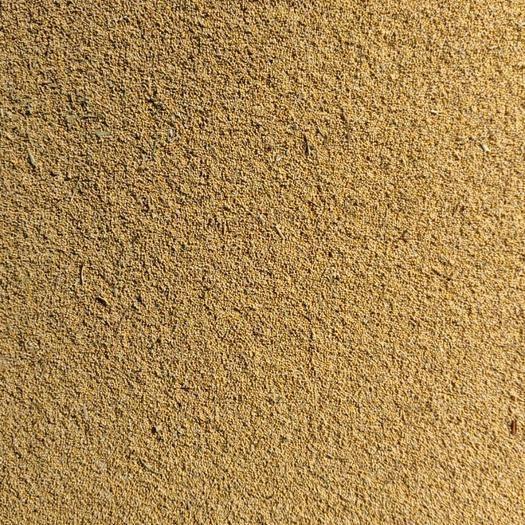 内蒙古自治区赤峰市敖汉旗黄小米 常年供应客商谷子