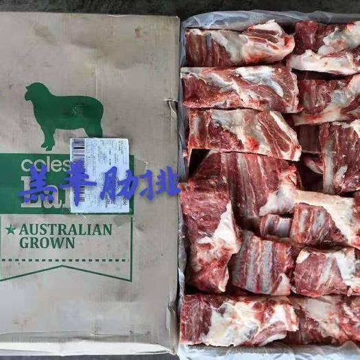 山东省潍坊市安丘市羊排 高品质羔羊肋排块