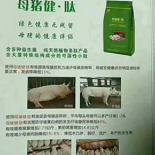 河南省郑州市惠济区怀孕母猪饲料 母猪健肽,母猪保健产品,微生态制剂。