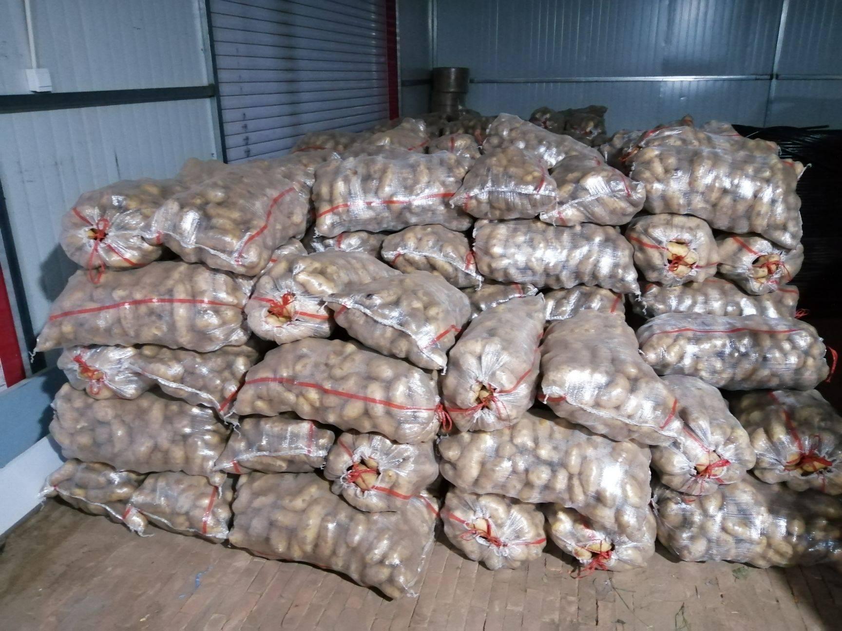 我处有荷兰土豆80吨,