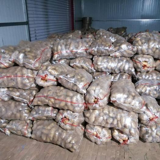 内蒙古自治区通辽市奈曼旗 我处有荷兰土豆80吨,