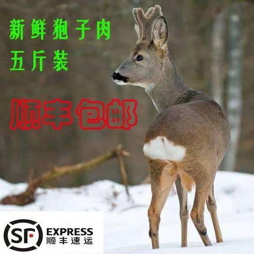 贵州省贵阳市花溪区 狍子肉
