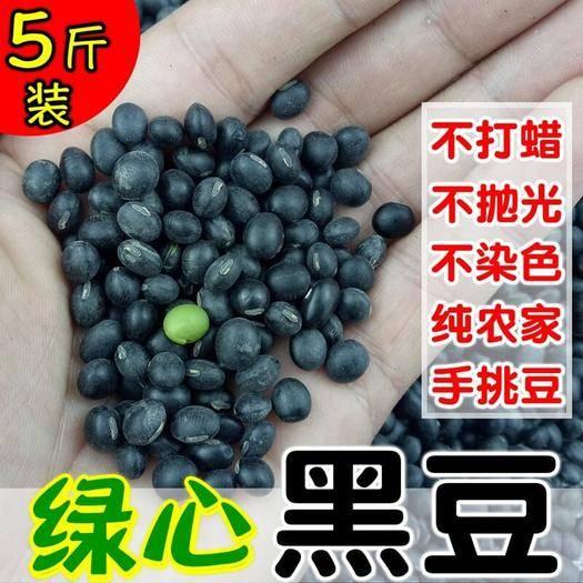 綏化蘭西縣 東北青仁非轉基因綠心芯小黑豆打豆漿泡醋黑小豆農家自產5斤散裝