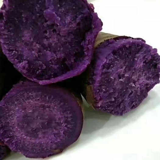 蒙陰縣 營養豐富的紫薯,讓你的餐桌多一點色彩