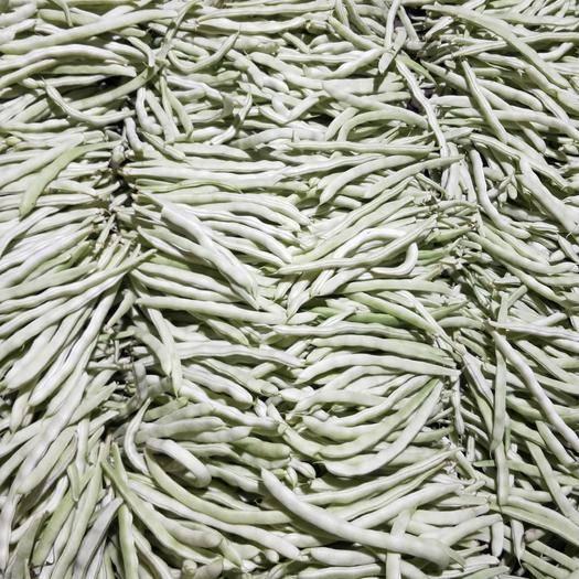 辽宁省锦州市北镇市白条豆角 刚下来的 质量没问题