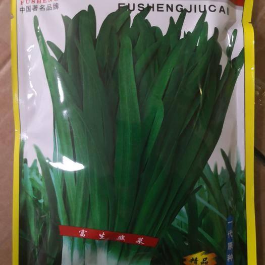 夏邑縣 富生791寬葉雪韭,生長快,抗寒性強,口感辛香,韭菜種子