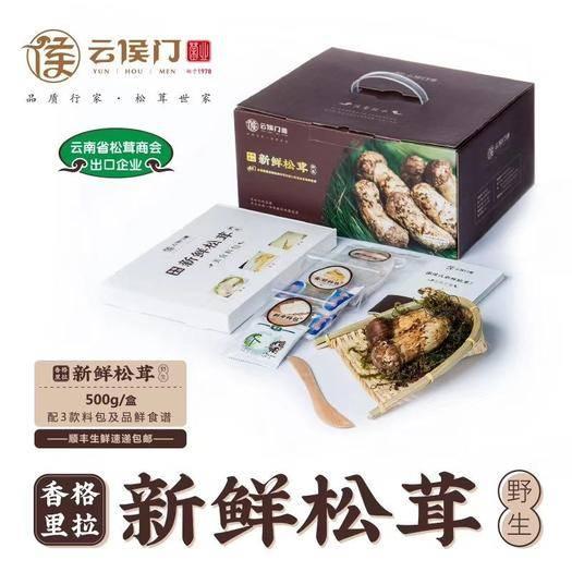 云南省昆明市盘龙区 香格里拉松茸
