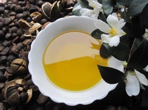 寧德古田縣 茶油,山茶油,白花茶油