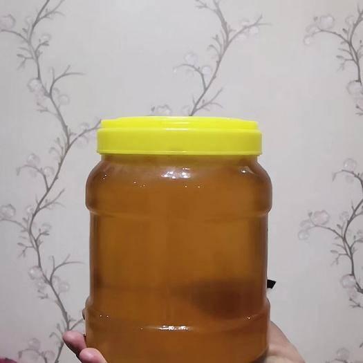 湖北省黄冈市麻城市 土蜂蜜
