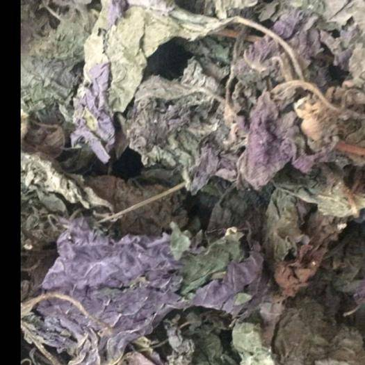 重庆市涪陵区 批发干紫苏叶,量大从优,欢迎选购。
