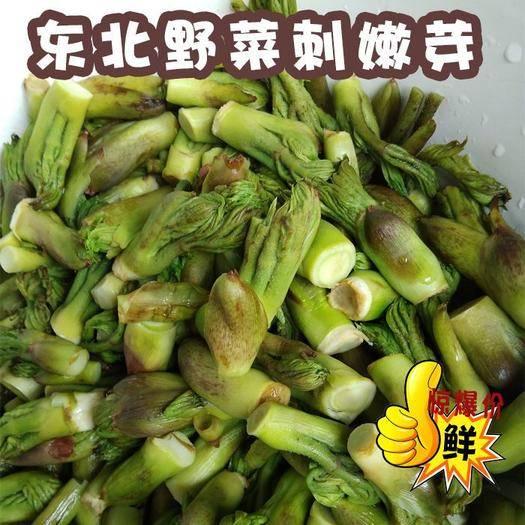 吉林省吉林市桦甸市 东北野生山野菜 保鲜袋装刺嫩芽750g*1袋 3/5袋送酱大