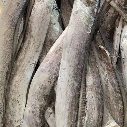 蘇州太倉市 舟山小眼油帶魚1斤3條大小整帶魚新鮮急凍