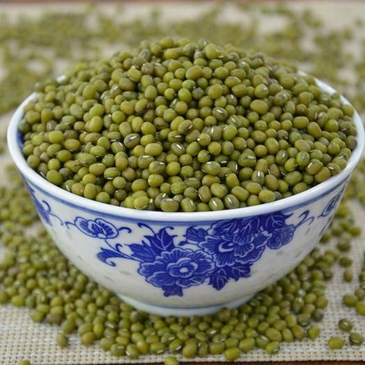 沈陽 新綠豆大粒綠豆批發干綠豆子綠豆2斤5斤10斤特價煮粥散裝