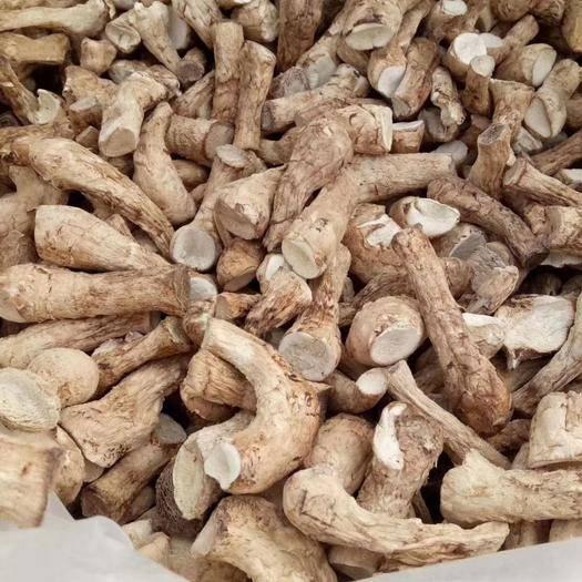 安康汉滨区 陕西生产基地直销双剪香菇脚货品上乘