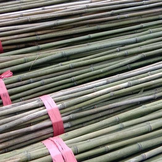 衡陽耒陽市 供應各類優質菜架竹
