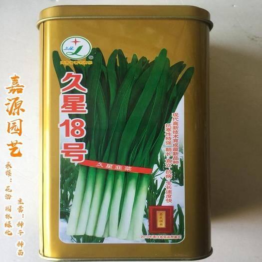 成都 韭星18號韭菜種子包郵