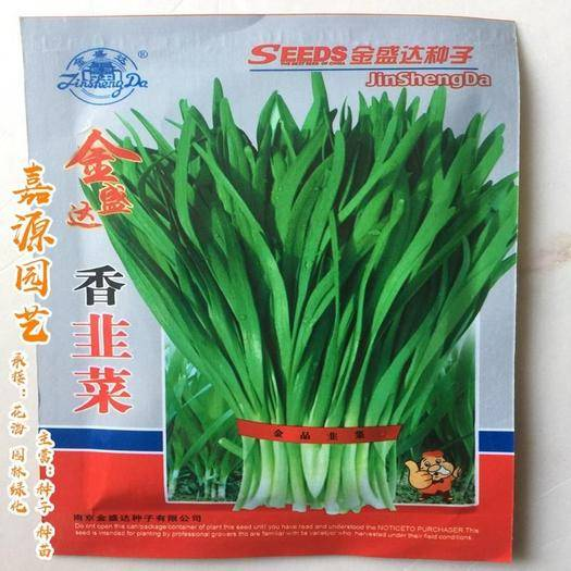 成都 香韭菜種子包郵