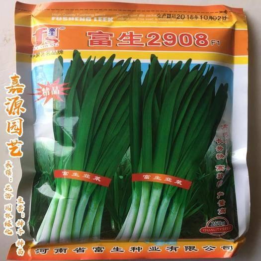 成都 富生2908韭菜種子