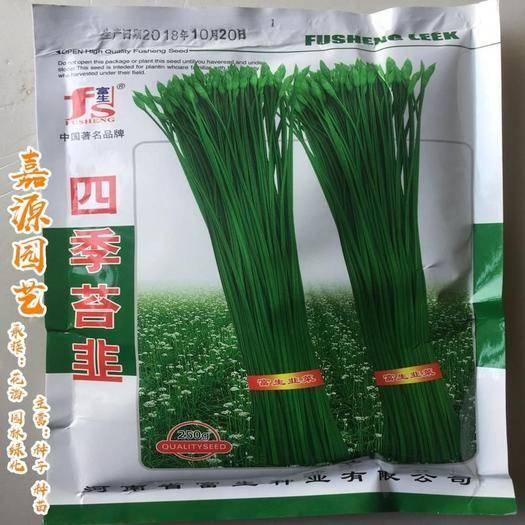 成都 四季苔韭韭菜種子包郵