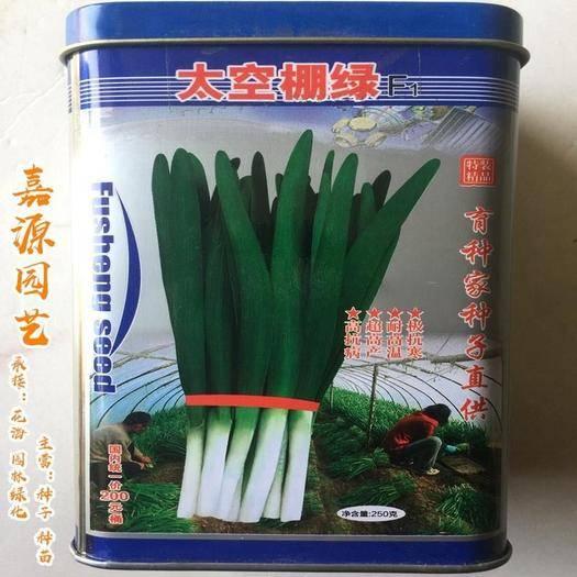 成都 太空棚綠韭菜種子