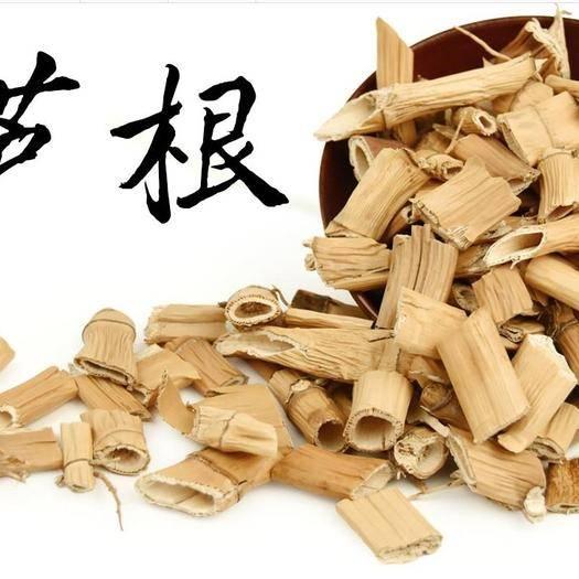 亳州譙城區 蘆根 正品葦根干 葦莖 蘆葦根茶 另有菊苣,一斤包郵無需運