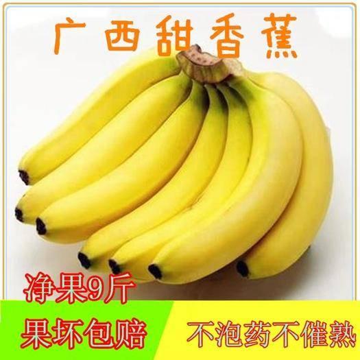 南宁西乡塘区 【正常发货】【限时秒杀】广西大香蕉9斤包邮香甜高山甜香蕉