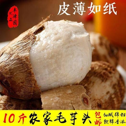 尋烏縣 包郵10斤毛芋頭牛奶芋子贛南小芋頭芋艿香芋山芋山藥干貨特產