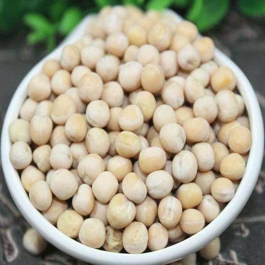 四川省成都市新都区 豌豆 黄豌豆