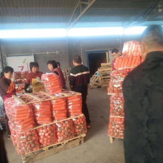 陕西省榆林市靖边县 大量胡萝卜