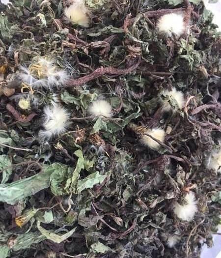 成都金牛區 中藥材茶蒲公英藥用食療煮水全干貨蒲公英多個等級