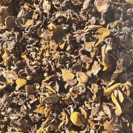 河北省承德市隆化县松蘑 产地批发一手货源,有需要的可以联系,现货照片