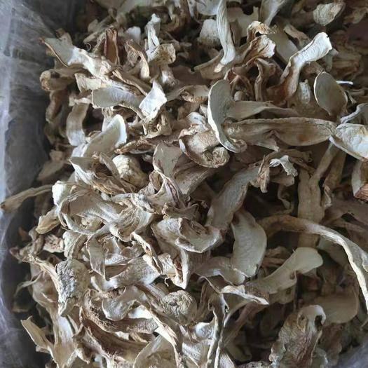 西藏自治区昌都市左贡县 纯野生松茸干片,假一赔十