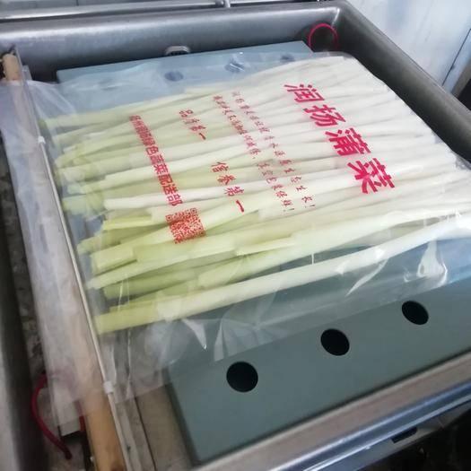 扬州蒲菜 预订客户可以提货了!11月6号上市走货!
