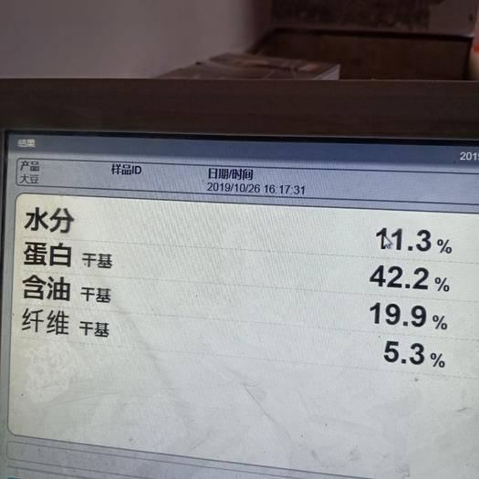 延边朝鲜敦化市黄大豆 东农252高蛋白黄豆,蛋白43%适合做各种高档豆制品豆