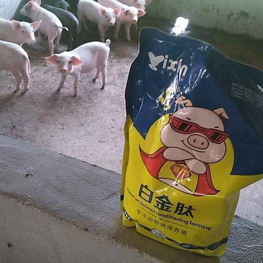 鄭州營養添加劑 斷奶小豬拉稀腹瀉吃 促生長 增強免疫拉骨架