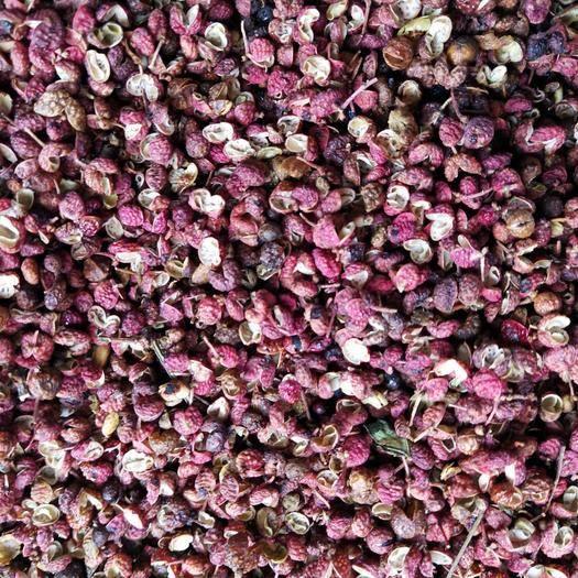 棗莊大紅袍花椒 一級 干花椒