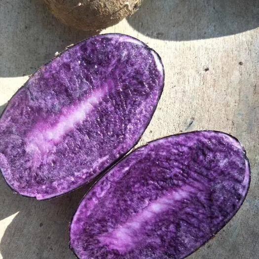 云南省大理白族自治州剑川县 大理高原紫土豆,富含丰富花青素,真正的降三高,纯正绿色食物